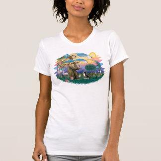 Tibetan Spaniel (tri color) T-Shirt