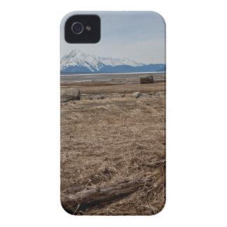 Tidal Flats iPhone 4 Case-Mate Case