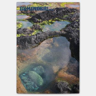 Tidal pools post-it notes