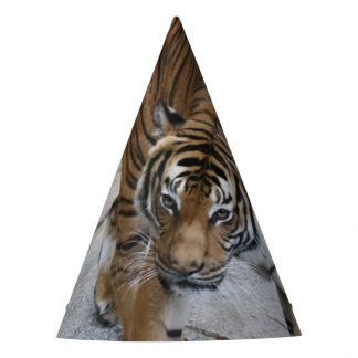 Tiger 1216 AJ Party Hat
