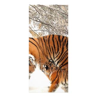 Tiger Cat Animal Print Personalize Anniversaries Customised Rack Card