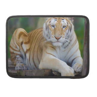 Tiger Cat print custom personalize Anniversaries Sleeve For MacBooks