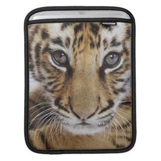 Tiger Cub iPad Sleeve