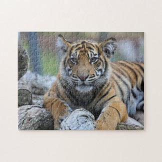 Tiger Cub Jigsaw Puzzle
