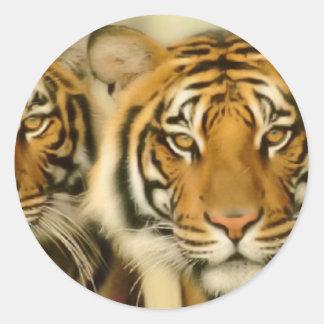 Tiger Eyes Round Sticker