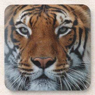 Tiger Face Beverage Coasters