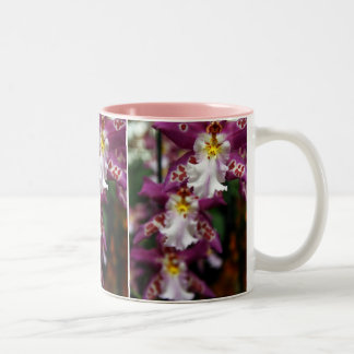 Tiger Lilly Orchids Two-Tone Coffee Mug