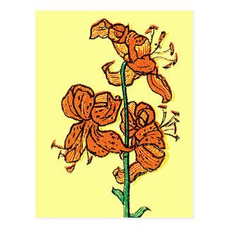 Tiger Lily by Kate Greenaway Postcard
