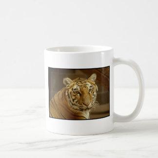 Tiger Picture Basic White Mug