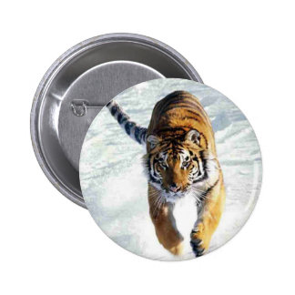 Tiger running in snow 6 cm round badge