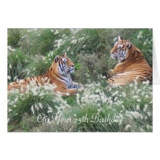 Tigers 75th Birthday Card