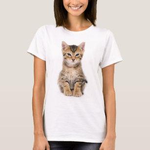 Tiny Tiger Kitten White T-Shirt