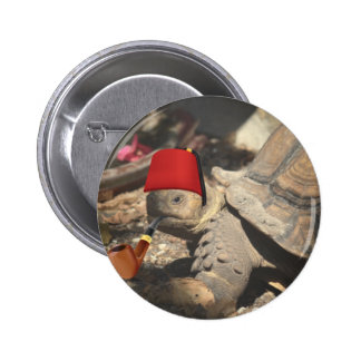 Tiny tortoise wearing a boumi hat 6 cm round badge