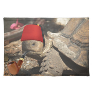 Tiny tortoise wearing a boumi hat placemat
