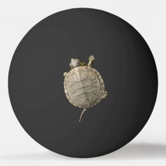 Tiny Turtle on Black Ping Pong Ball