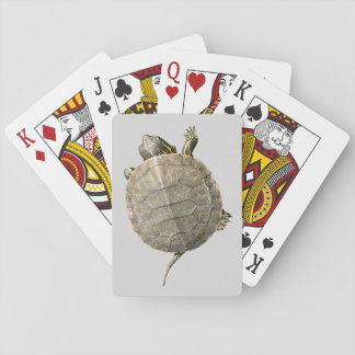 Tiny Turtle (Tortoise) on Light Gray Background Playing Cards