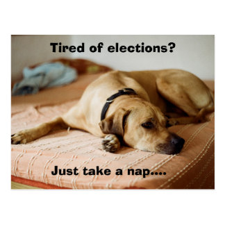 TIred of Elections? Just take a nap! Postcard