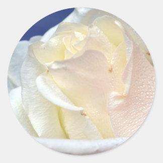 To Love a Rose Classic Round Sticker