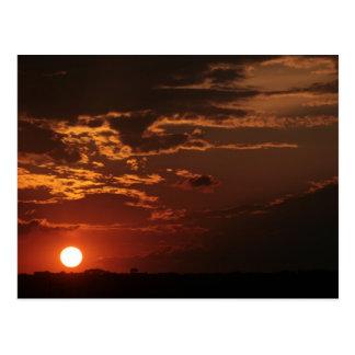 To put of the Sun Postcard