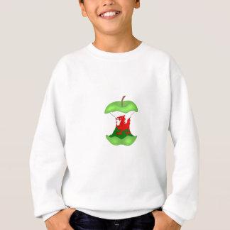 'to the core' Wales Sweatshirt
