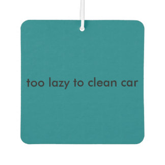 too lazy to clean car