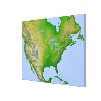 Topographic view of North America Stretched Canvas Prints
