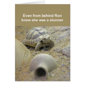 Tortoise card