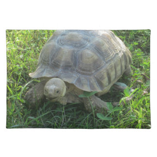 Tortoise in Grass Placemat
