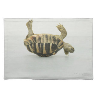 Tortoise upside down, balancing on shell placemat