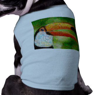 Toucan collage-toucan  art - collage art shirt