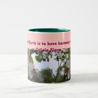 touch the Earth mug