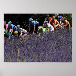 Tour de France in the lavenders Poster