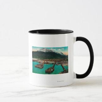 Town View of Skagway, AlaskaSkagway, AK Mug