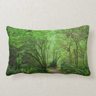 Trail in Redwood Forest Lumbar Pillow