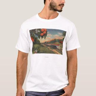 Train- Orange Blossom Special T-Shirt