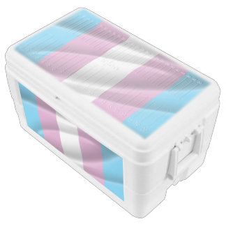 TRANS PRIDE WAVY VERTICAL - 2014 PRIDE.png Igloo Ice Chest