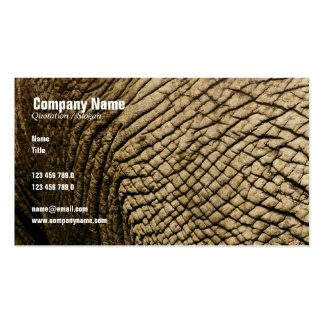 Travel Business Card Standard