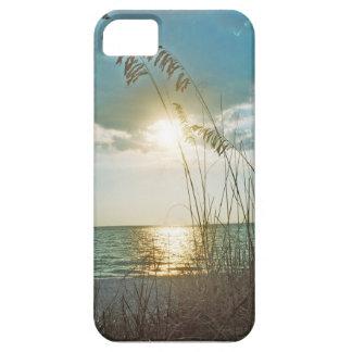 Treasure Island Sunset iPhone 5 Covers