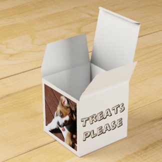 Treats Please! Party Favour Box