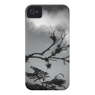 Tree Against the Sky iPhone 4 Case