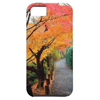 Tree Autumn Colors Japan iPhone 5 Covers