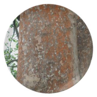 Tree Bark Plates
