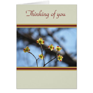 Tree Blossom Thinking of You Card