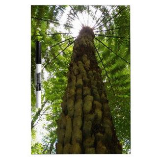 Tree Fern Dry-Erase Board