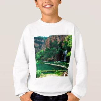 Tree Hanging Lake Glenwood Canyon Colorado Sweatshirt