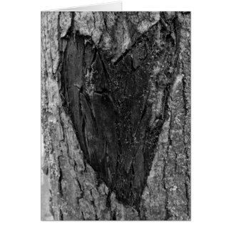 Tree Heart Carving Note Card