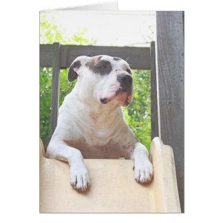 Tree House Pit Bull T-Bone Greeting Card