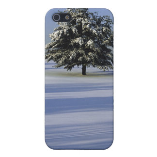 Tree in snow covered landscape iPhone 5 case