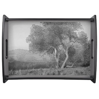 TREE IN THE MIST SERVING TRAY