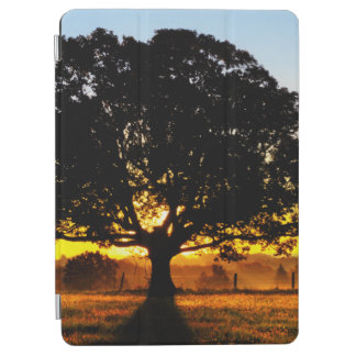 Tree in the Morning iPad Air Cover
